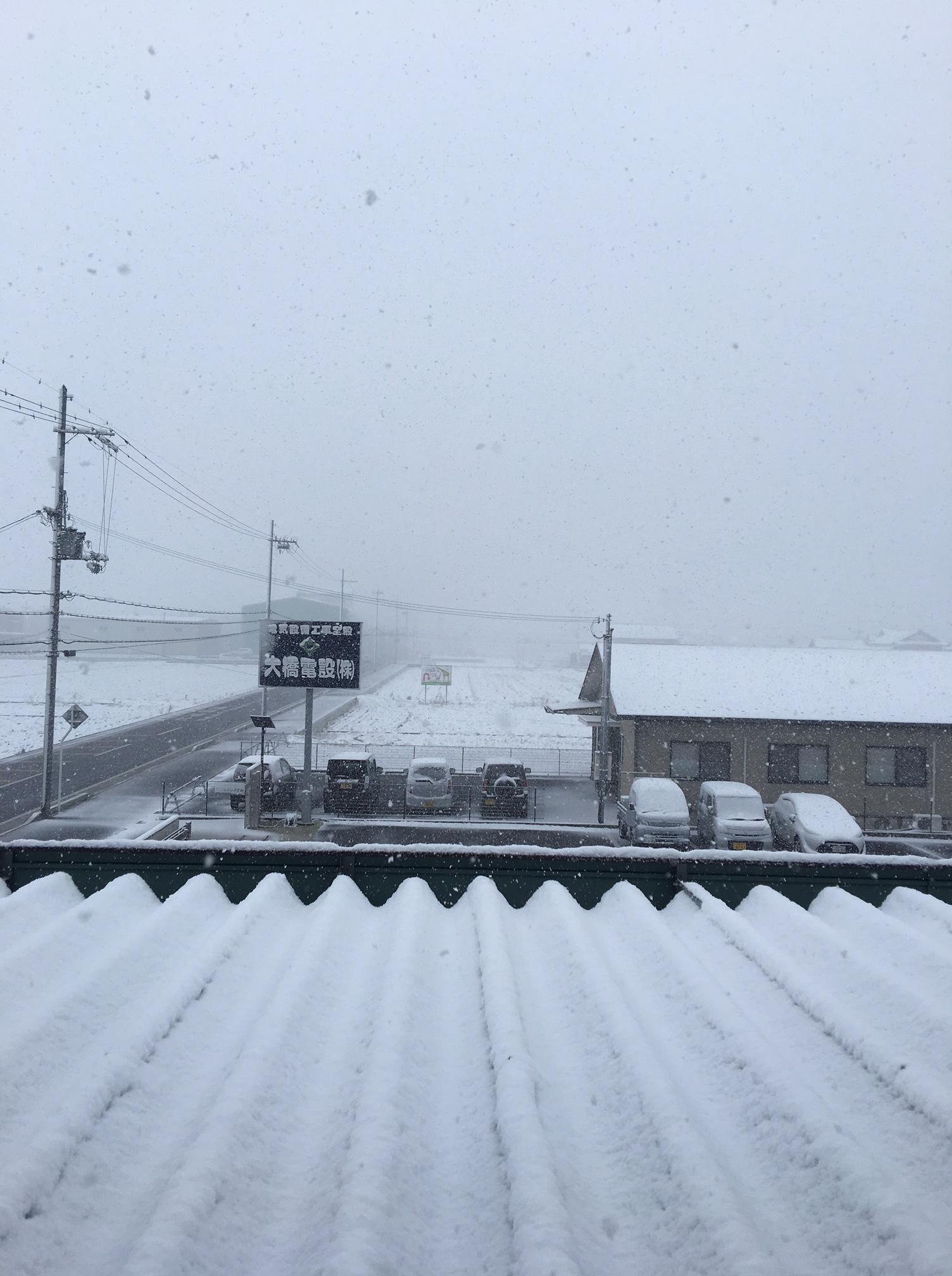 2月・初雪